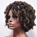 MD-KARIS: NATURAL KINKY TWIST OUT LOOK WIG