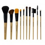 FLORI ROBERTS: #14791 - PROFESSIONAL BRUSH SET
